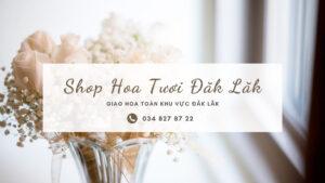 Shop hoa tươi đăk lăk - trao cánh hoa mềm giao ngàn yêu thương