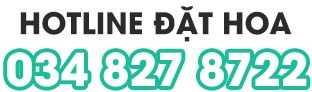Hotline tư vấn đặt hoa nhanh 034 827 8722