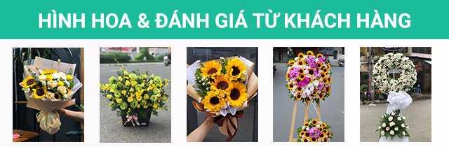 Hình hoa thực tế và đánh giá từ khách hàng