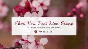 Shop hoa tươi kiên giang 30